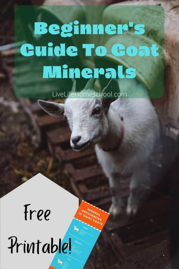 mineral deficiencies in goats