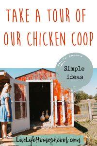 chicken coop, chicken coop ideas, diy chicken coop