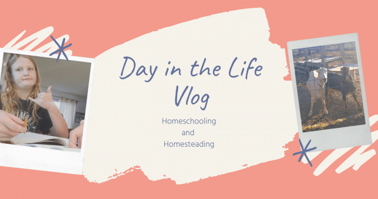 Day in the Life Vlog of a Homeschooling, Homesteading Family