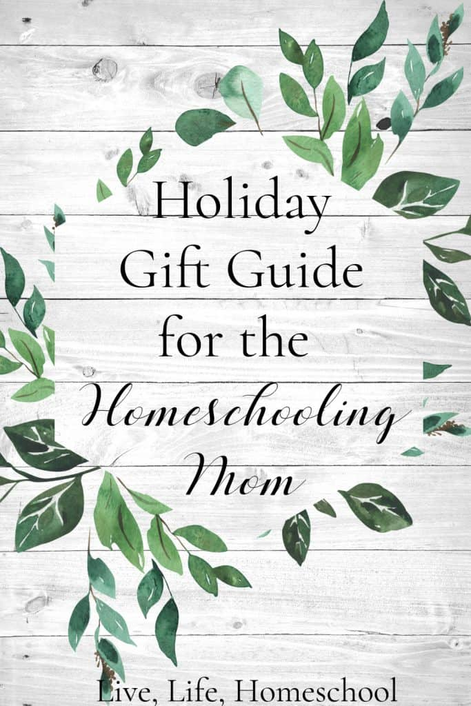 homeschool holiday gift guide