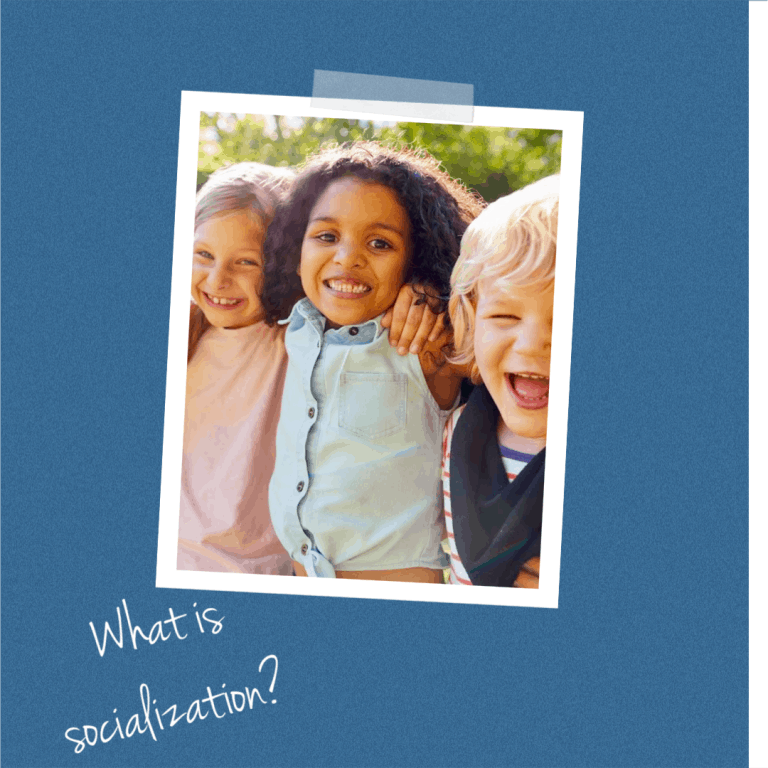 socialization in homeschooling