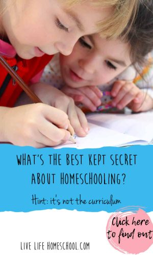 homeschooling, homeschool curriculum, homeschooling success